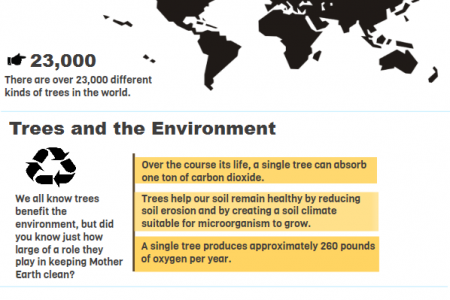 Facts About Trees Infographic