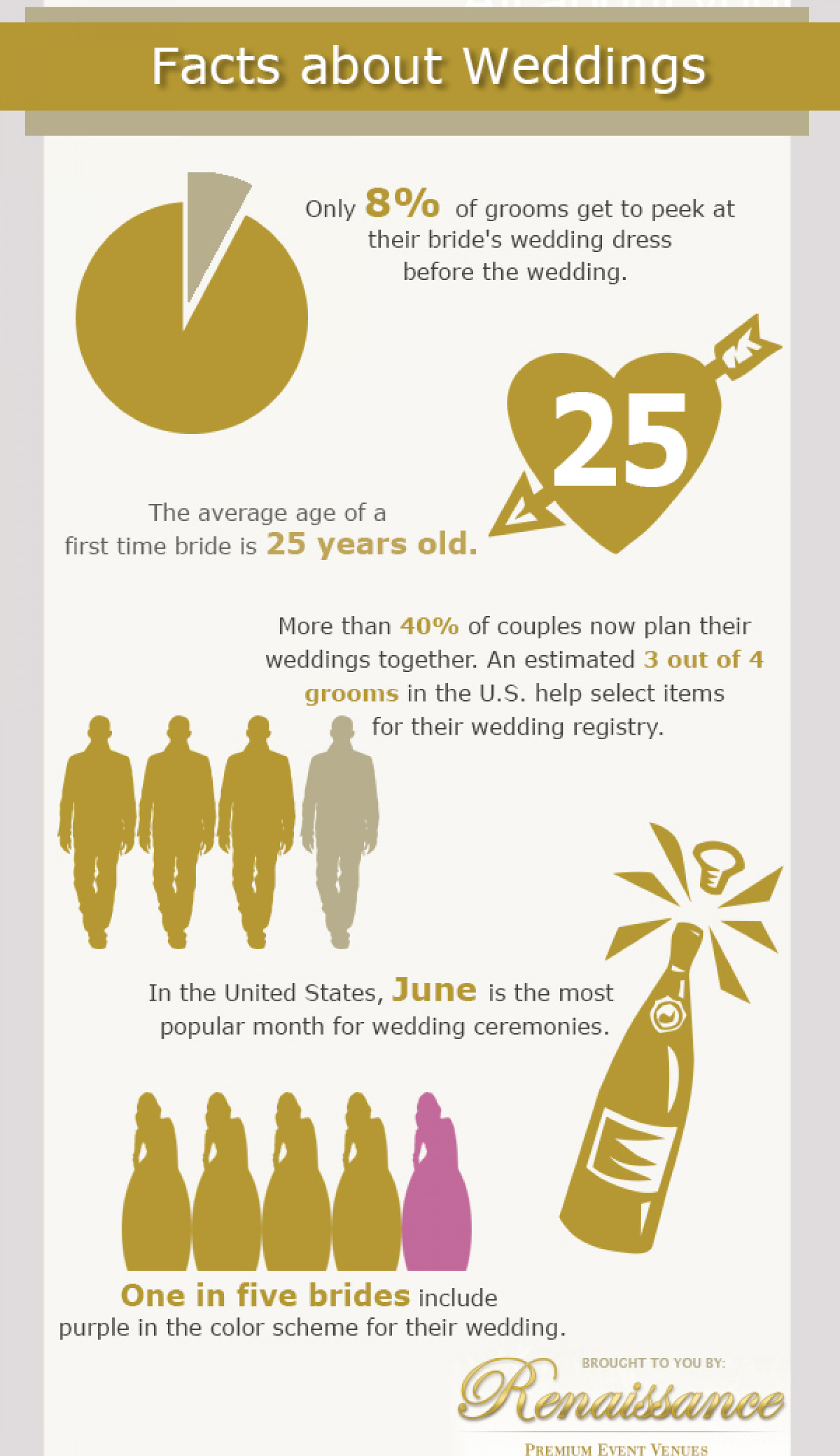 Facts About Weddings Infographic