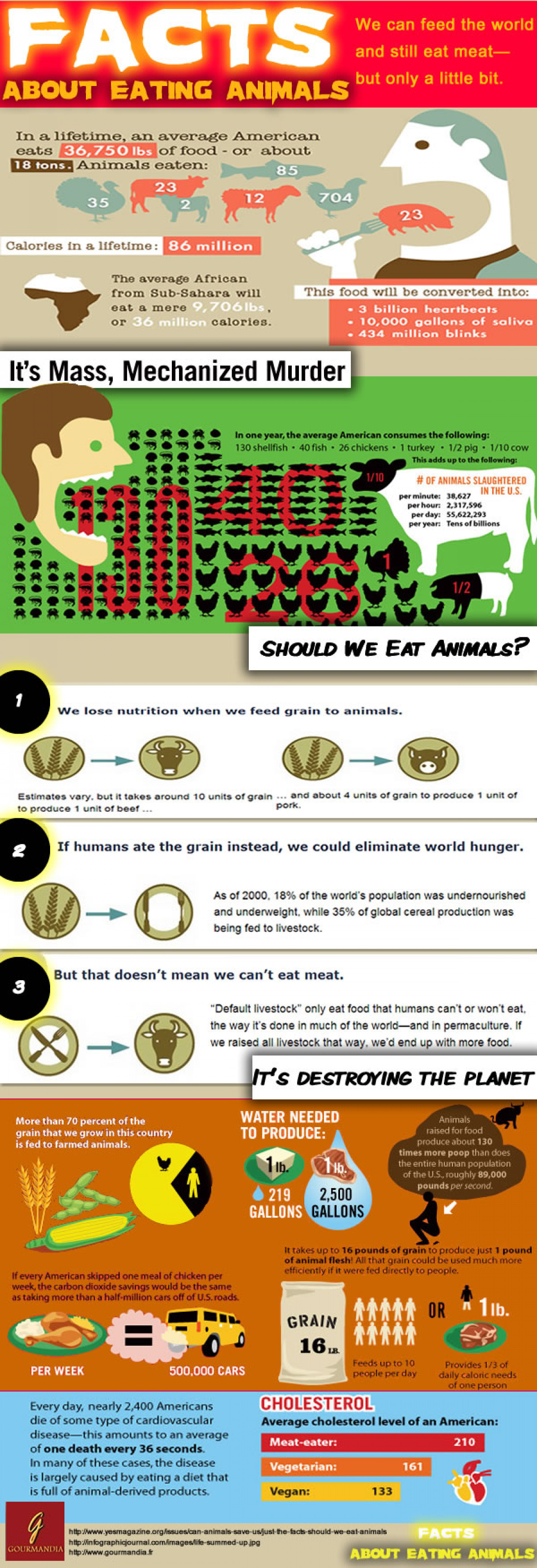 Facts: Eating Animals Infographic