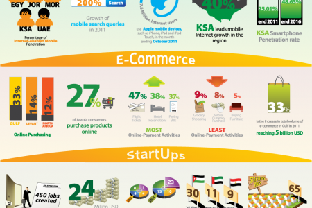 Facts you Didn't know about Digital Arabia Infographic
