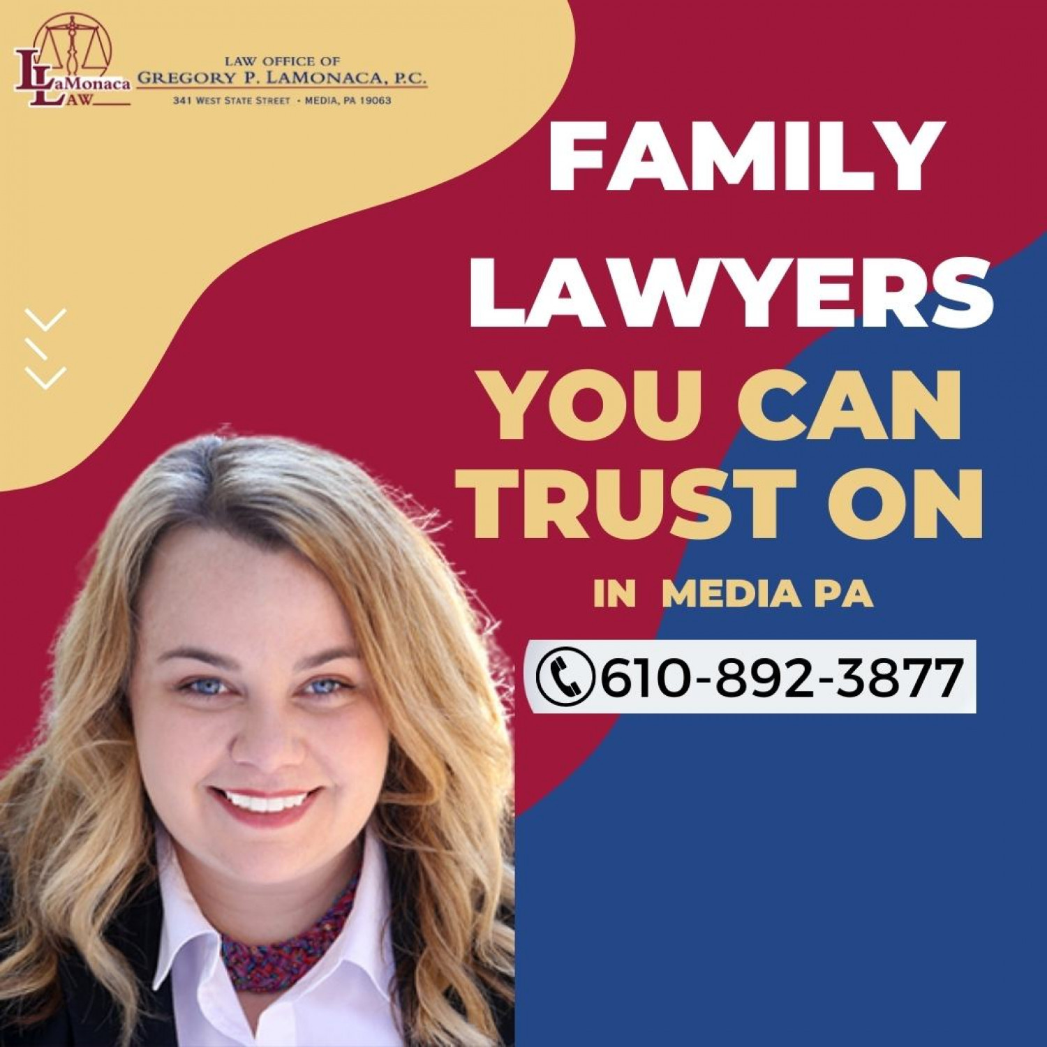 Family Lawyers You Can Trust On in  Media PA | LaMonaca Law  Infographic