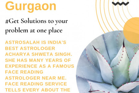 Famous Face Reading Astrologer in Gurgaon Infographic