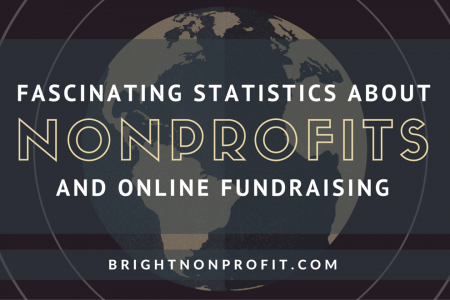 Fascinating Statistics About Nonprofits and Online Fundraising Infographic