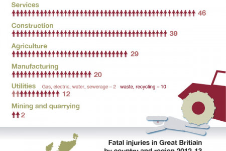 Fatal Injuries in the Workplace 2012-2013 Infographic