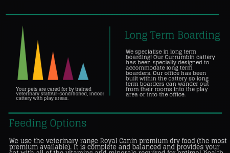 Feeding options boarding lounge Infographic