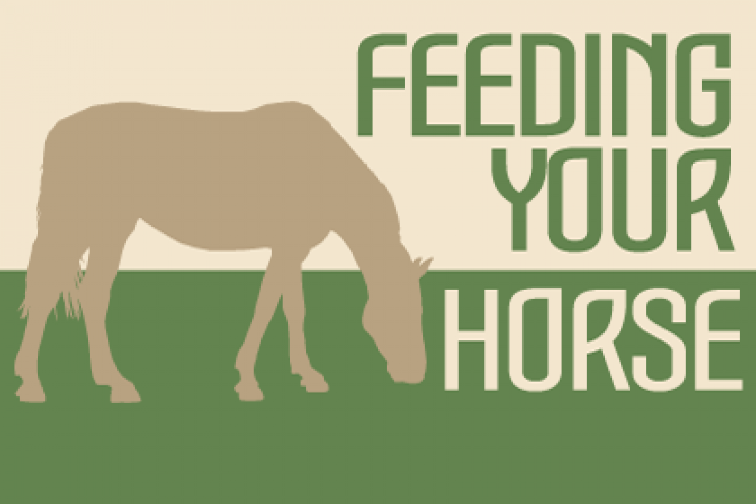 Feeding Your Horse  Infographic
