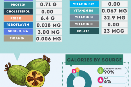 Feijoa nutrition facts Infographic