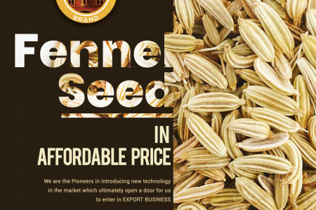Fennel Seed Exporting Services Pakistan Infographic