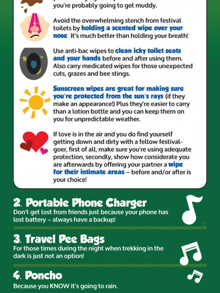Festival Survival -  need to know guide  Infographic
