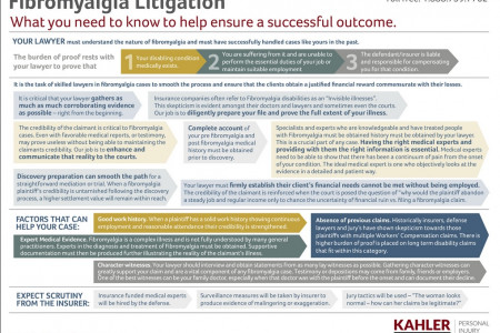 Fibromyalgia Litigation Chart - illustraion Infographic