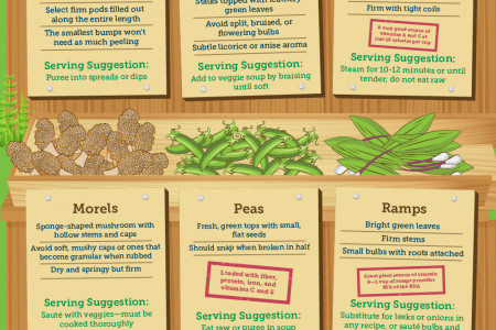 Field Guide to Spring Farmers' Markets Infographic