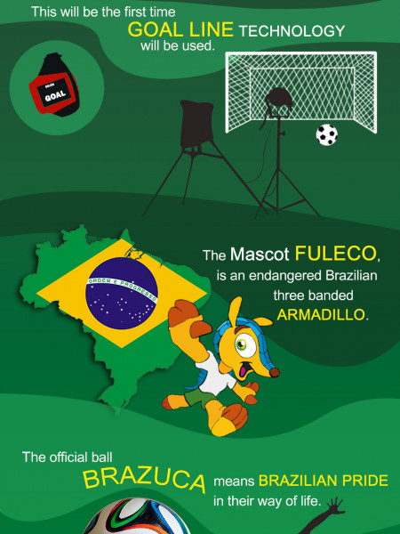 FIFA Fun Facts Infographic