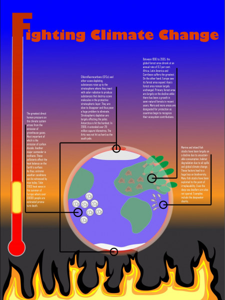 Fighting Climate Change Infographic