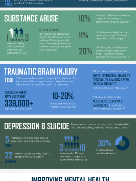 Veterans Mental Health Awareness Infographic