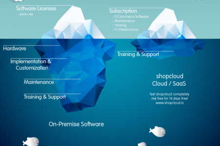 Financial Benefits of Moving to the shopcloud Infographic