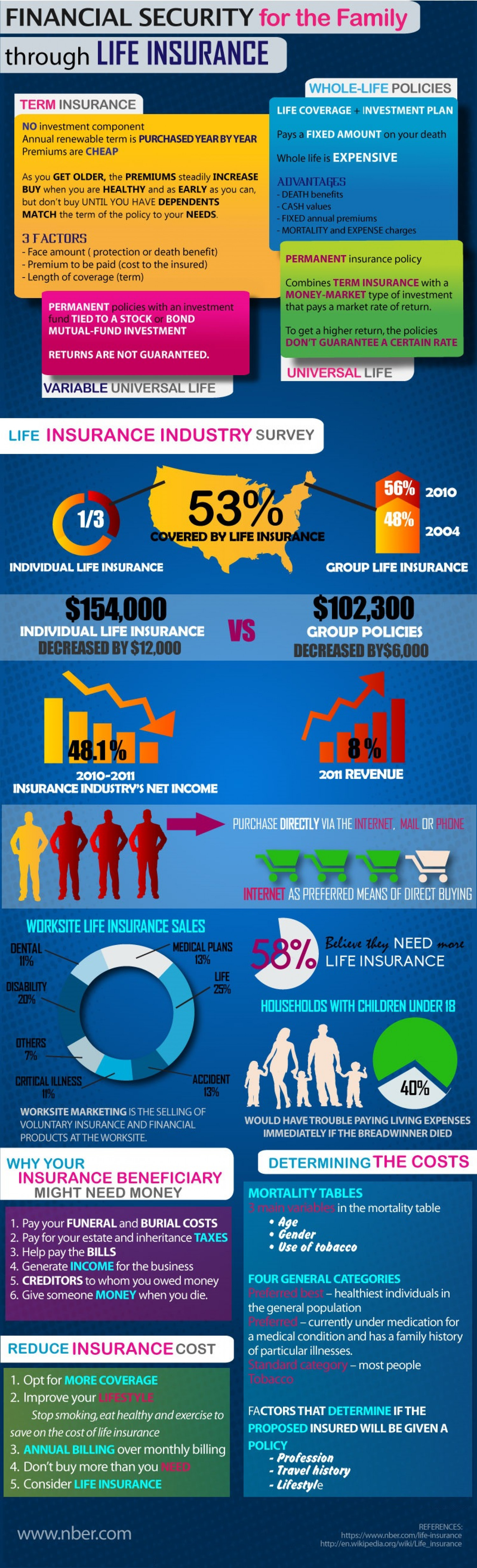 Financial Security for the Family through Life Insurance Infographic