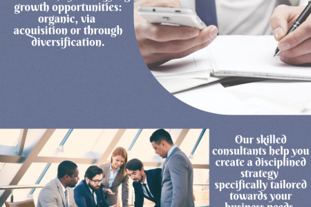 Find best Management Consulting Firms Sydney Infographic