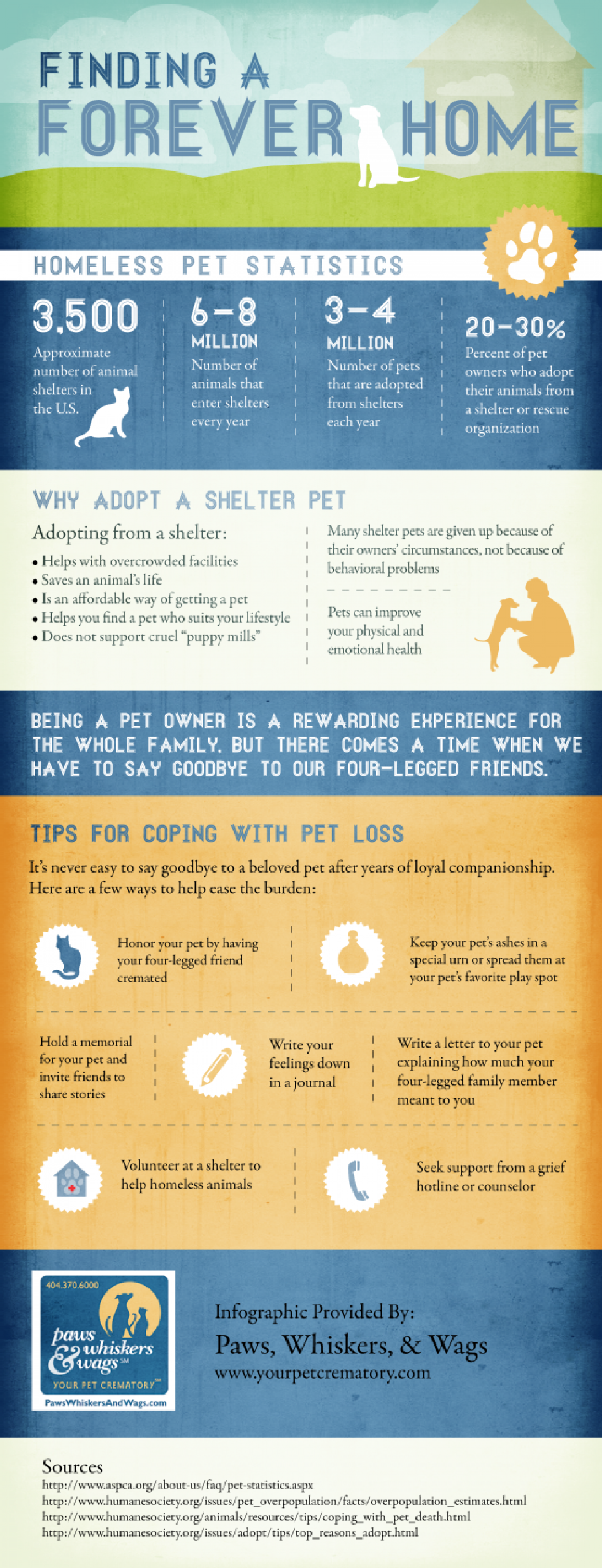 Finding a Forever Home Infographic