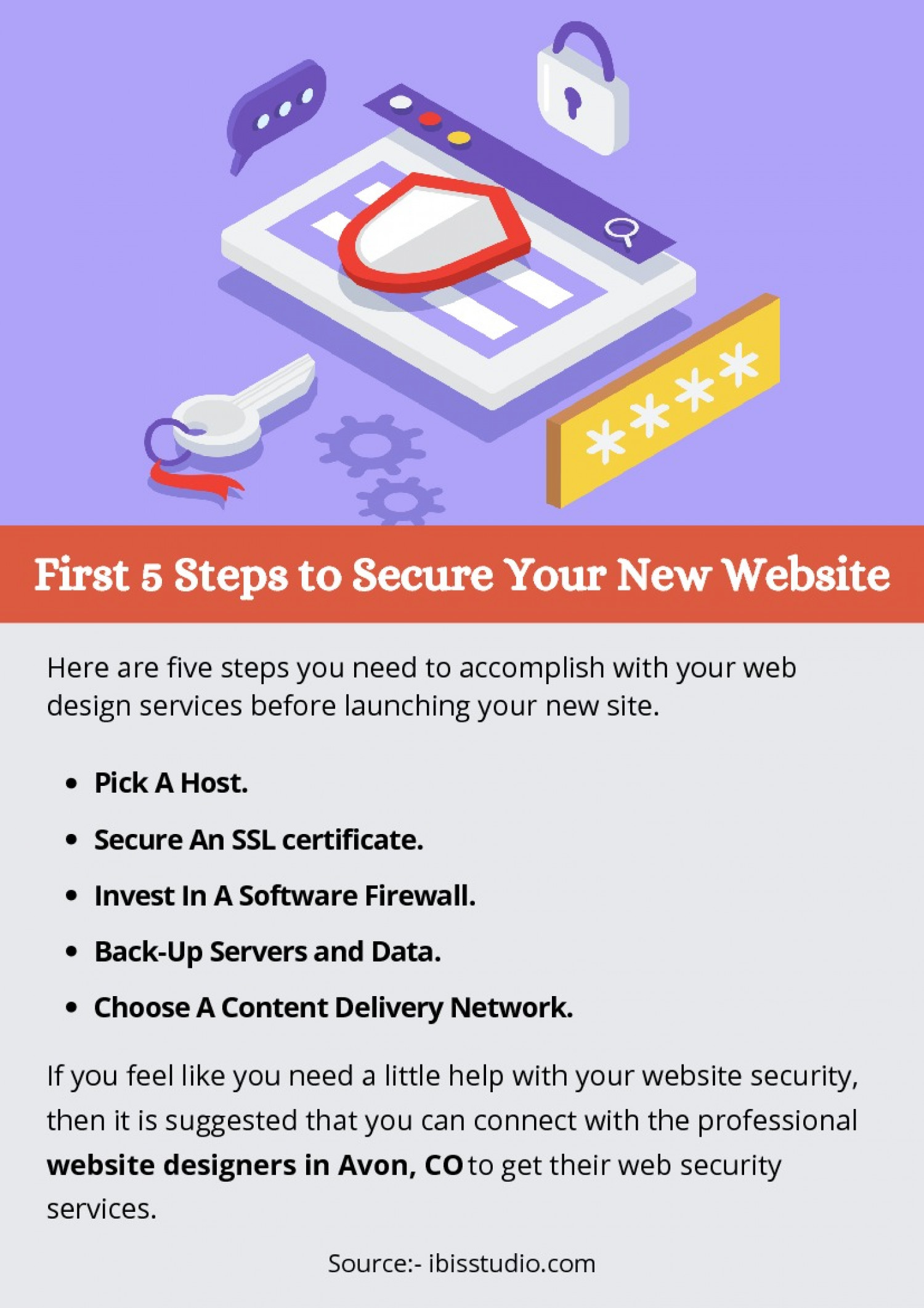 First 5 Steps to Secure Your New Website Infographic