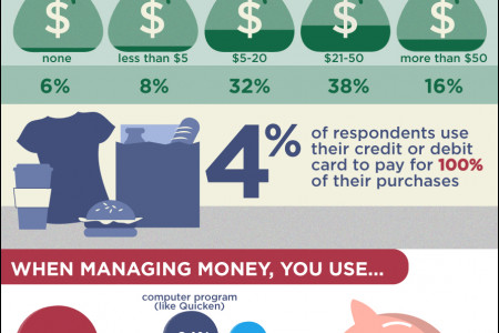Fiscal Responsibility: Paper or Plastic? Infographic
