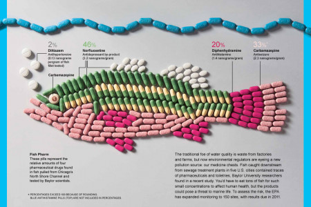 Fish Pharm Infographic