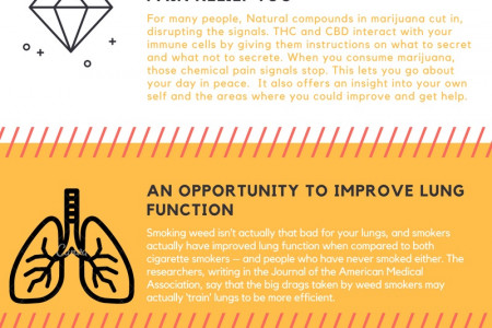 Five Points How Medical Marijuana Affects your Body! Infographic