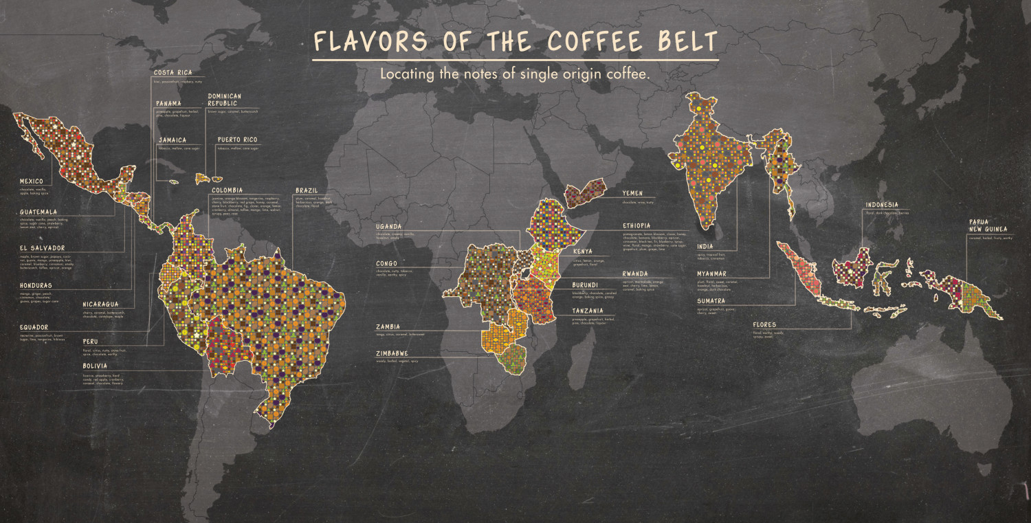 Flavors of the Coffee Belt Infographic