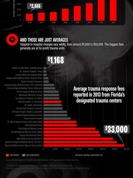 Florida's Trauma Toll Infographic