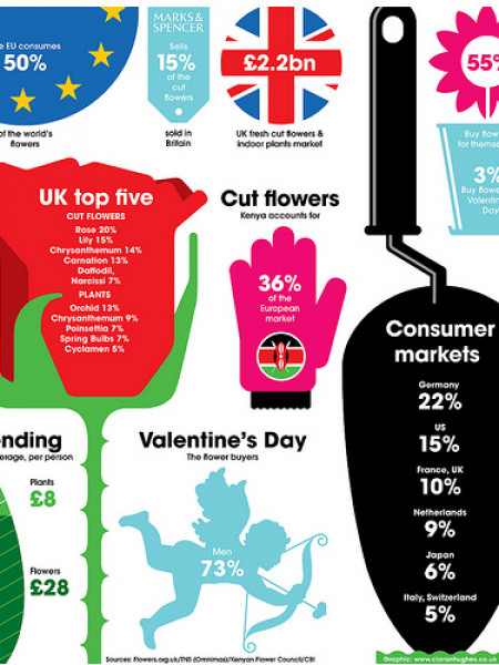 Flower Sales In The United Kingdom Infographic