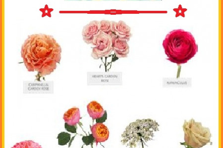 Flowers and Roses  Infographic