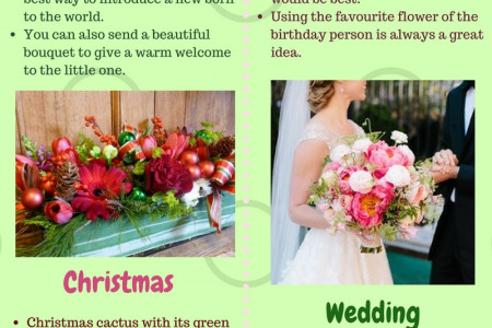 Flowers for special occasions Infographic