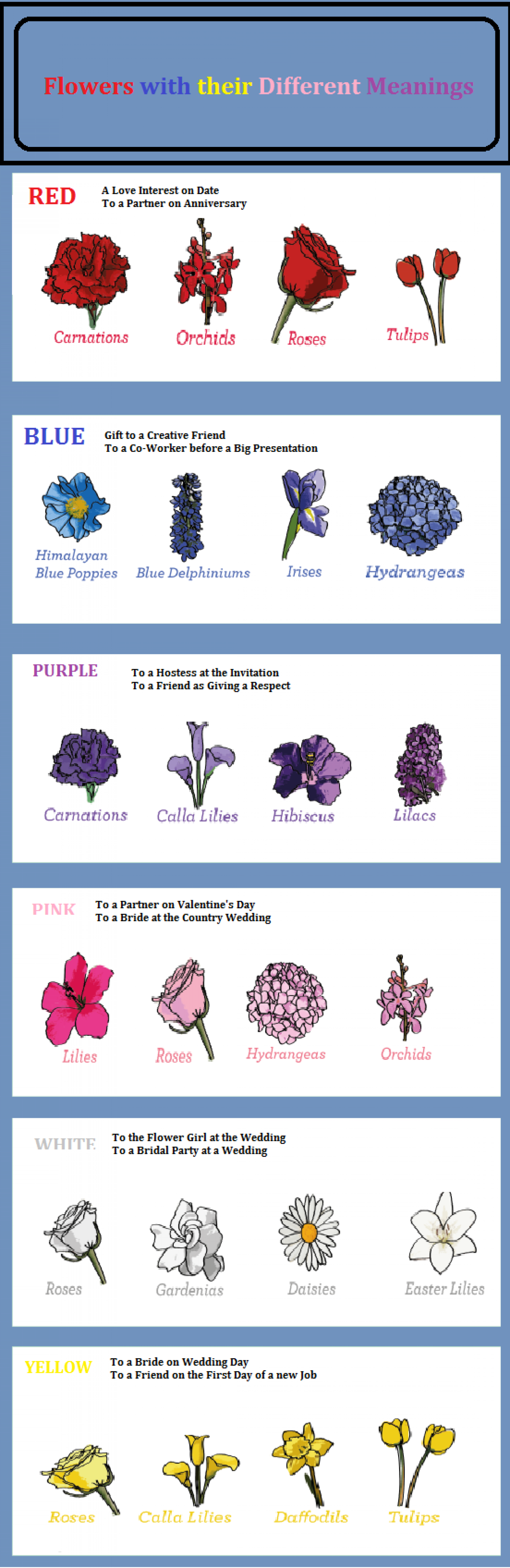 Flowers with their Meaning