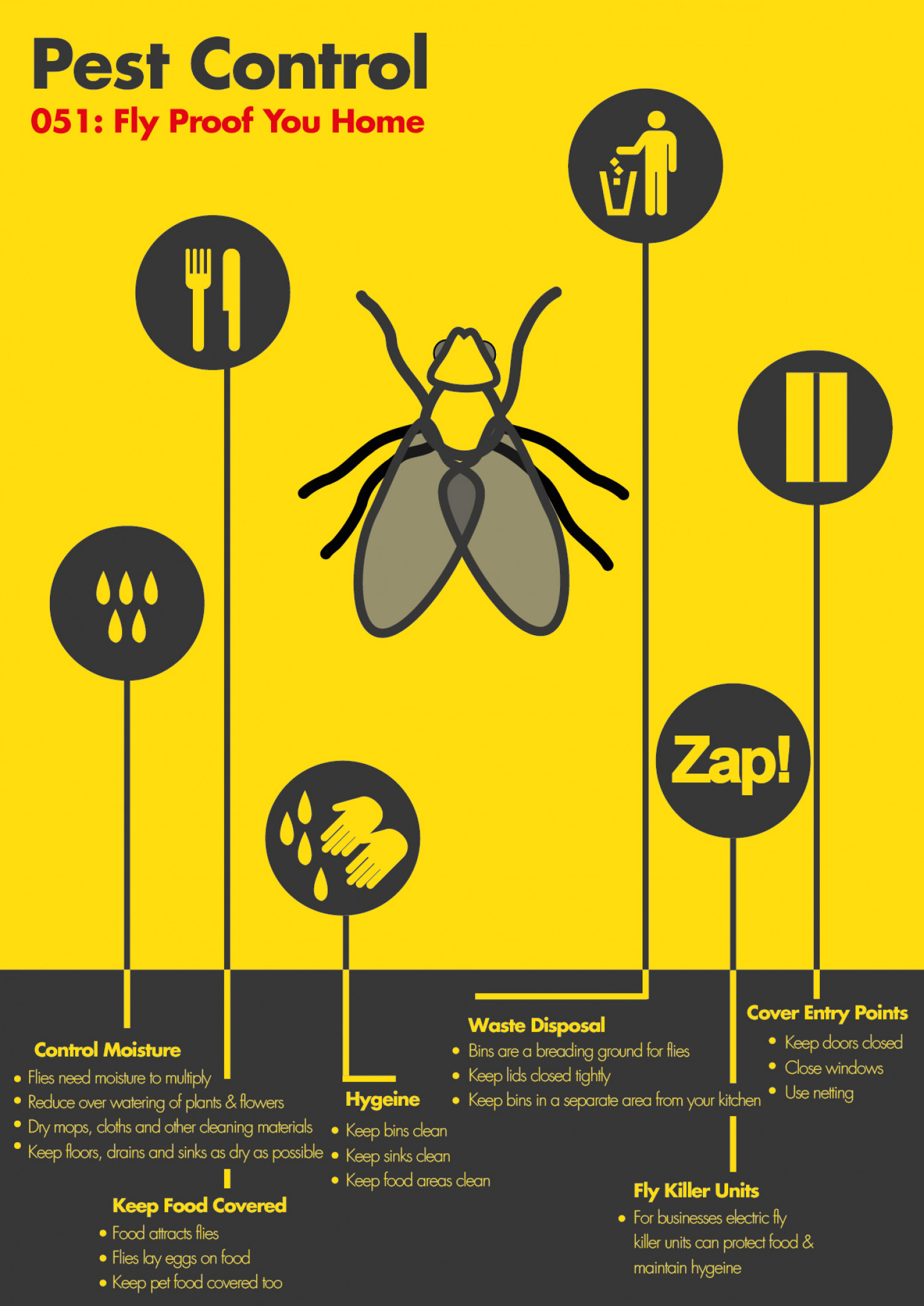 Fly Proof Your Home Infographic