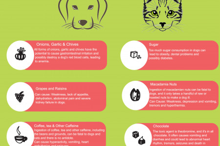 Food  Dogs & Cats Should Avoid Infographic