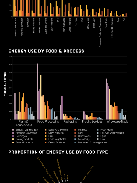 Food & Energy Infographic