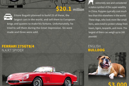 For the Man Who Has Everything: A Compendium of Luxury For Men Infographic