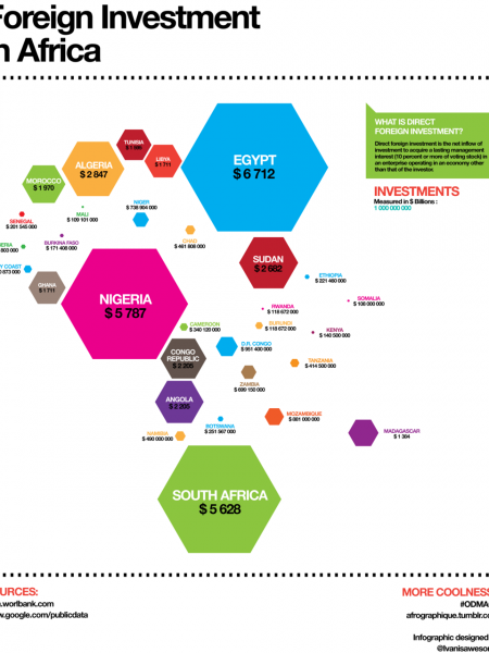 Foreign Investment in Africa Infographic
