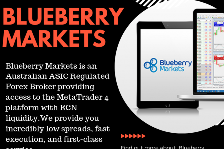 Forex trading platforms- Blueberry Markets Infographic