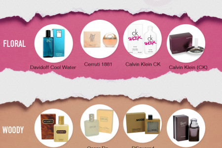 Fragrances Cosmetics Perfumes for Mens and Women Infographic