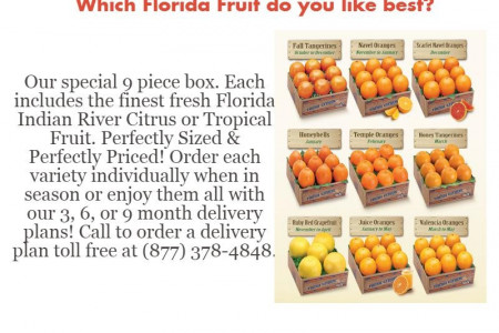 Fresh Florida Indian River Citrus Or Tropical Fruit Infographic