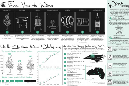 From Vine to Wine Infographic