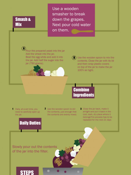 Vine to Wine Infographic