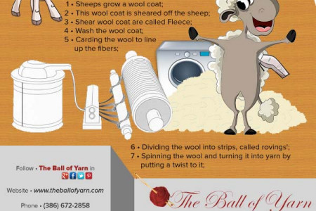 From Wool to Yarn Infographic