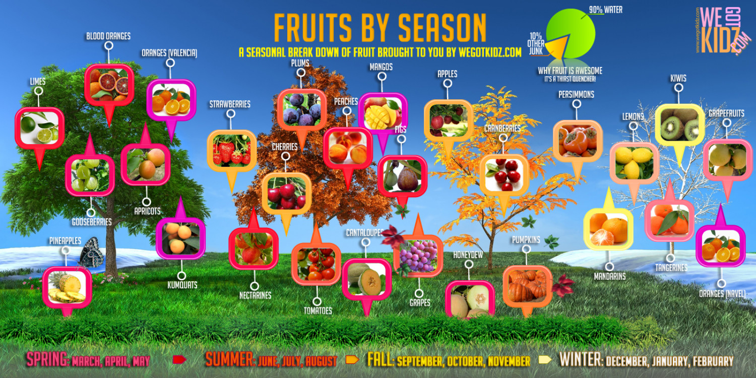 Fruits by the Season Infographic