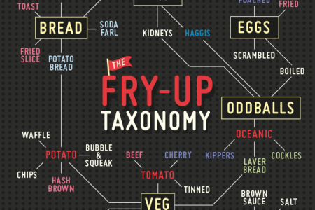 Fry-Up Taxonomy Infographic