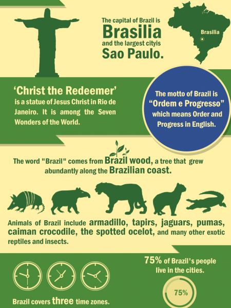 Fun Facts about Brazil Infographic
