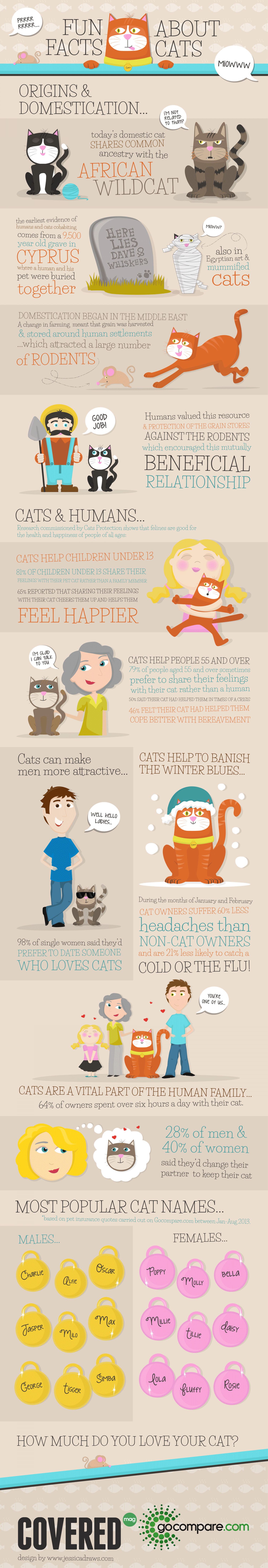 Fun Facts About Cats Infographic