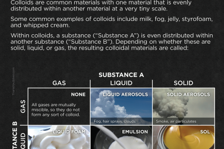 Fun Facts About Colloids Infographic