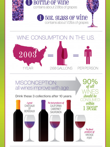 Fun Facts About Wine Infographic