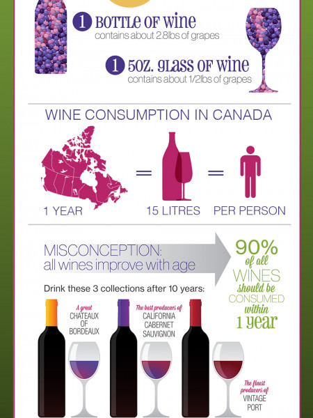 Fun Facts About Wine! Infographic